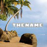 Palmera Premade Mixtape Cover Front