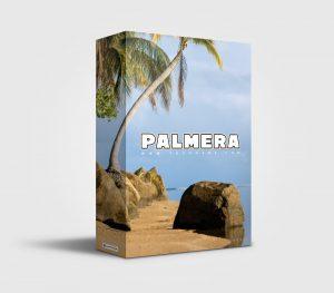 Palmera premade Drumkit Box Design