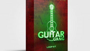 Producer Drip – Guitar Gang Loop Kit