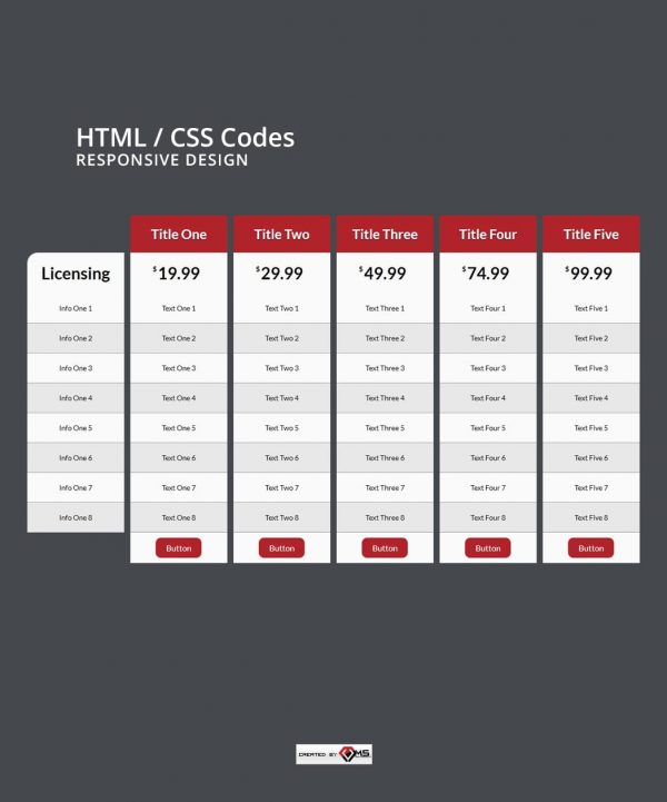 Responsive 5 Column Licensing Info Table HTML and CSS Preview